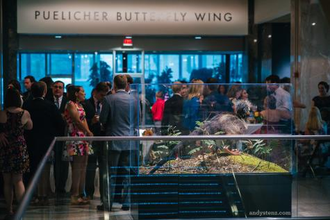 people in front of the puelicher butterfly wing
