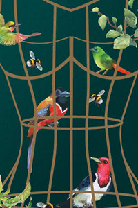 birds with birdcage