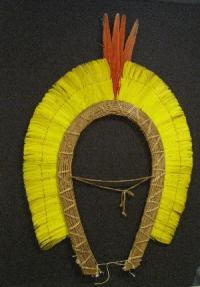 yellow feathered headdress