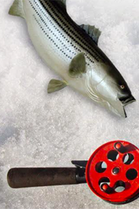 fish with fishing rod laying on ice